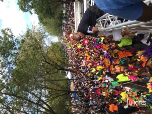 2014 West Indian Day Carnival (Julianspromos) (58)