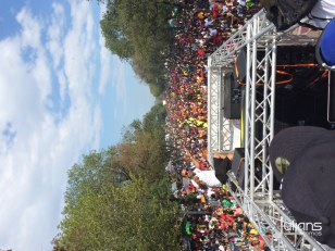 2014 West Indian Day Carnival (Julianspromos) (59)