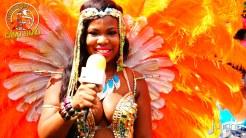 2015 Boston Carnival Vivaa (03)