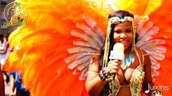 2015 Boston Carnival Vivaa (08)