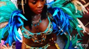 2015 West Indian Day Carnival (Julianspromos) (14)