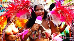 2015 West Indian Day Carnival (Julianspromos) (17)