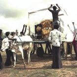 First Indian satelite on oxen cart 1981