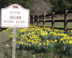 Julian roadsign and daffodils