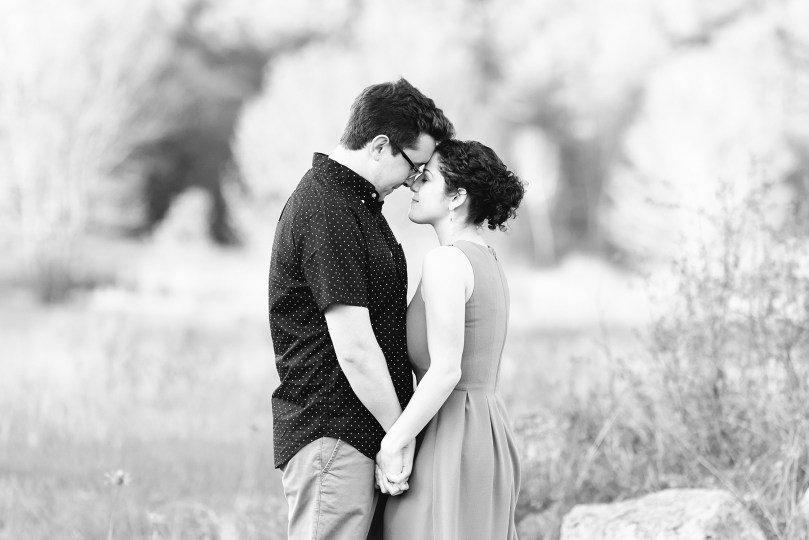 00017File_Upstate_Adirondack_Engagement_NY_SL