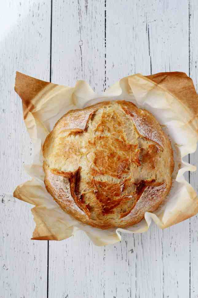 dutch oven bread no knead bread