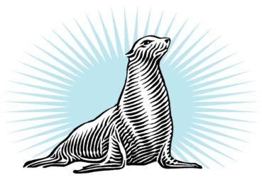 Julia Seal
