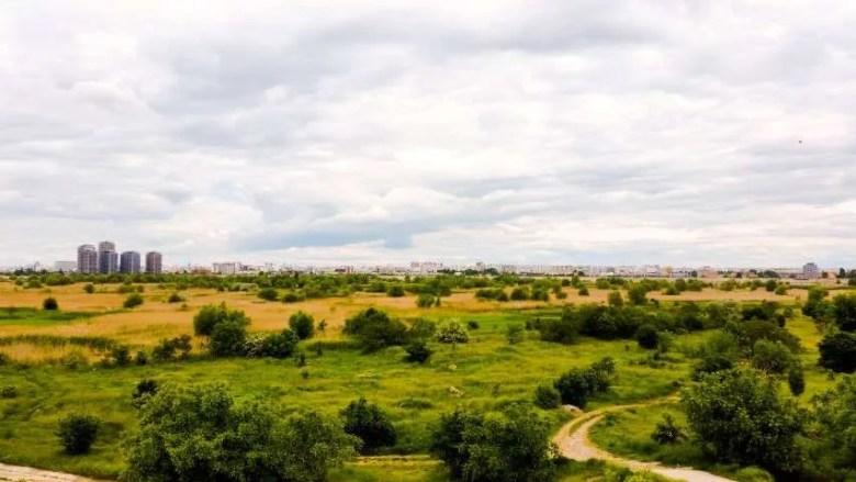 Vacaresti Delta Bucuresti Romania