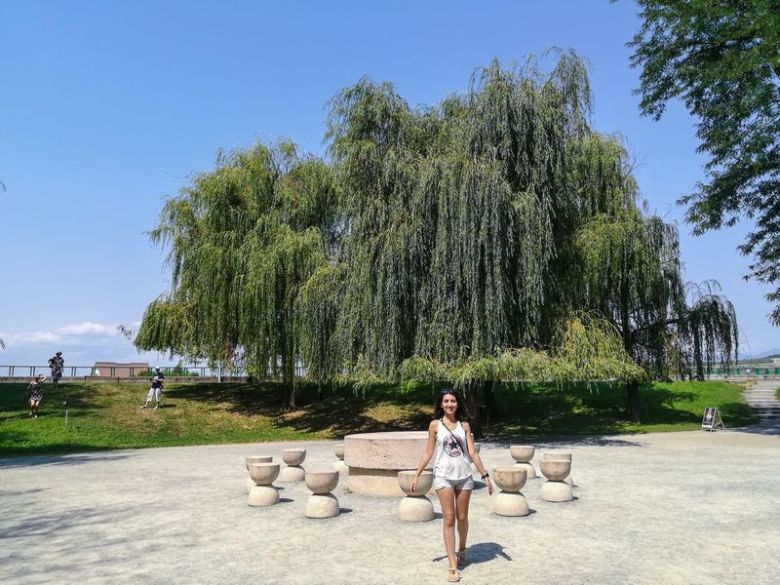 Tg Jiu Brancusi sculptures the Table of Silence