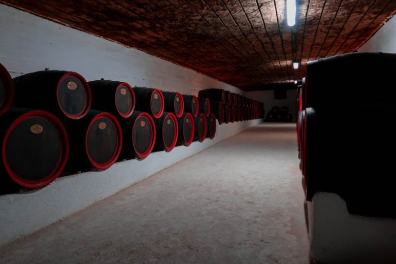 What is Cricova Winery? A place of senses and tastes! Cricova wine trip