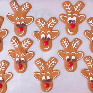 23 gingerbread-reindeer-cookies-0394-800x800