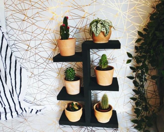 DIY Regal für Pflanzen wie Mini Kakteen ganz einfach selber bauen (10)