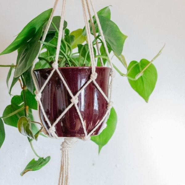 Blumenanpel DIY , do it yourself blumenampel, blumenampel selber machen mit nur einem knoten diy makramee blumenampel videoanleitung, makramee für anfänger