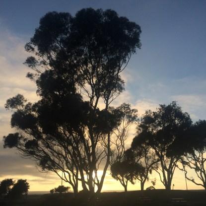 Sunset in Aliso Creek, CA