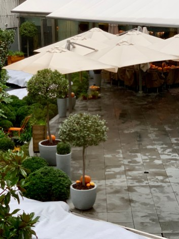 rainy day in the courtyard