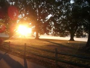 Day 1: Sunrise