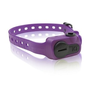 Dogtra iQ No Bark Collar Purple IQ-BARK-PUR
