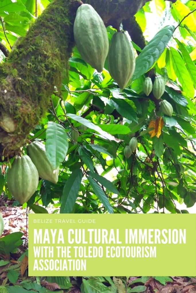 Cultural immersion in Belize