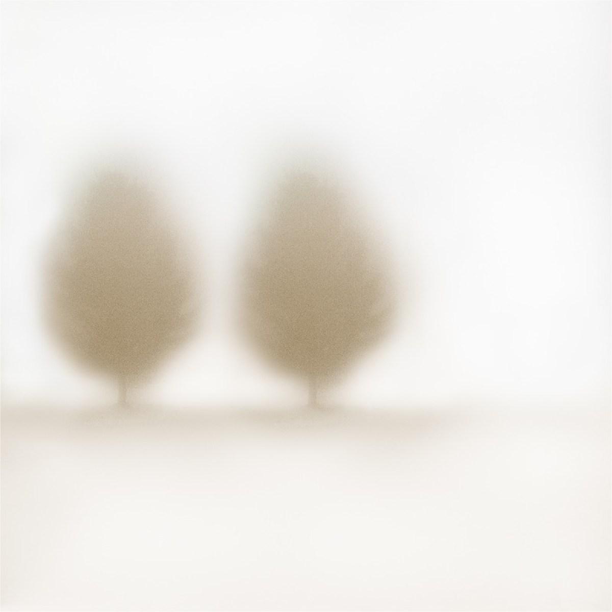 Le troisième ami #1 ©Julie_Beauchemin