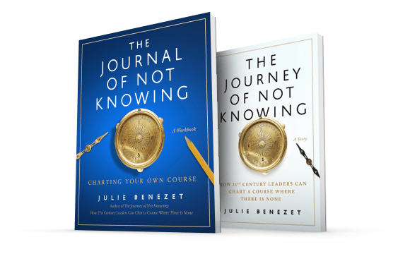 The Journey of Not Knowing books
