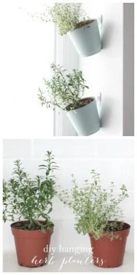Indoor Herb Garden Planter