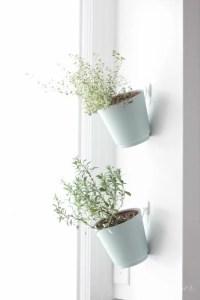 Indoor Herb Garden | Hanging Planter Tutorial