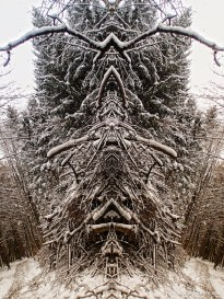 winter fractals