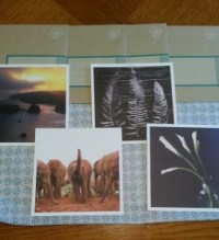 A variety of beautiful cards
