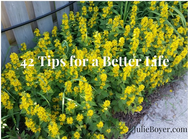 42 Tips for a Better Life – Source Unknown