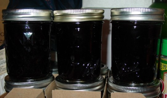 homemade mulberry jelly from juliecache's stash