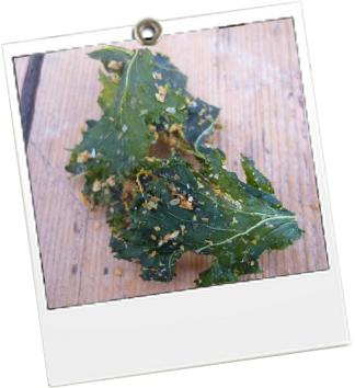 3 - Chips Kale