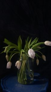 how to stop tulips drooping