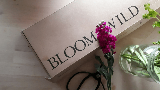 Review Bloom & Wild #letterboxflowers