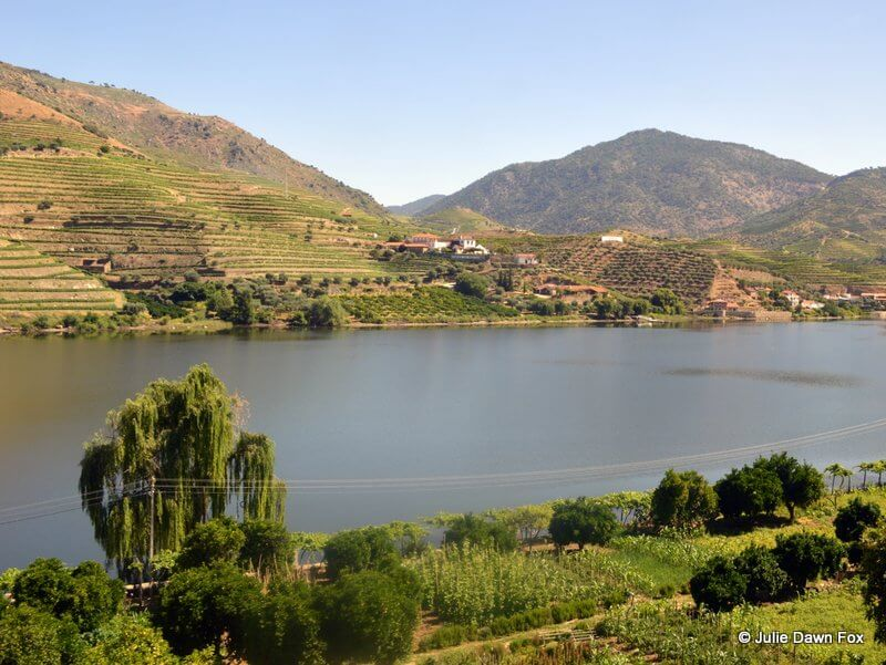 Vineyards and quinta, Upper Douro, Portugal