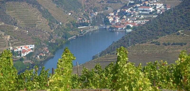 Pinhão and Douro River through vineyards