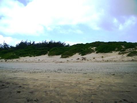 Beach to grass
