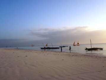 Dhows in morning