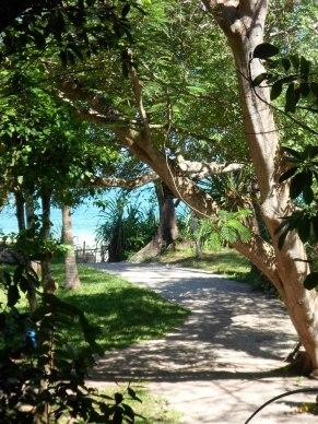path to beach4