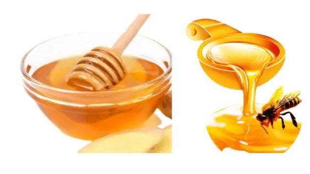 4 Main Effects of Honey & Sugar on Cholesterol & Cardiovascular/Heart Disease: Sugar is the Bad Guy & Honey is the Good Guy!