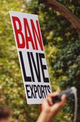 Ban Live Exports #marchinmarch