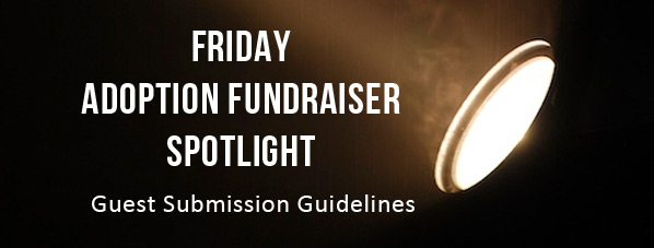 FundraiserSpotlightSubmissions