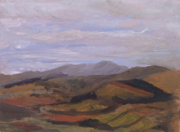 Landscape from Cadair foothills