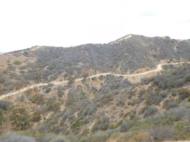 runyon canyon_4