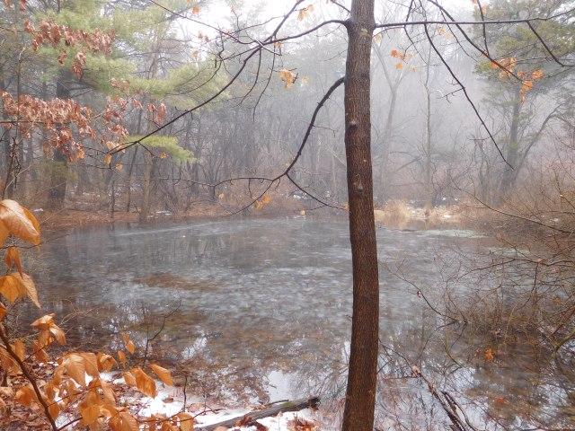 Mohawk_Landing_Nature_Preserve_1