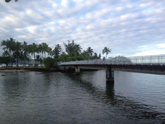 coconut_island_