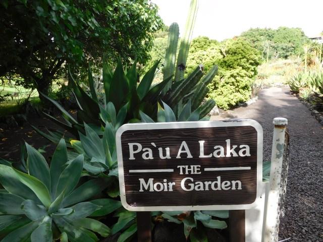 moir_garden_kauai