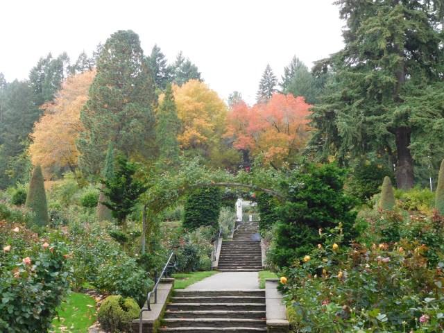 Best of Portland, OR Parks: International Rose Test Garden   Julie ...