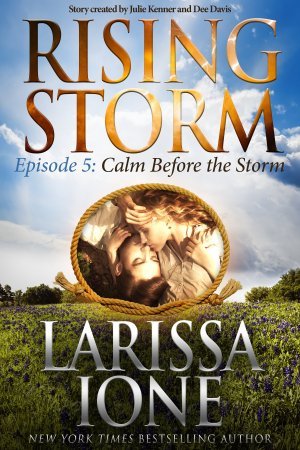 Calm before the Storm - E-Book Cover