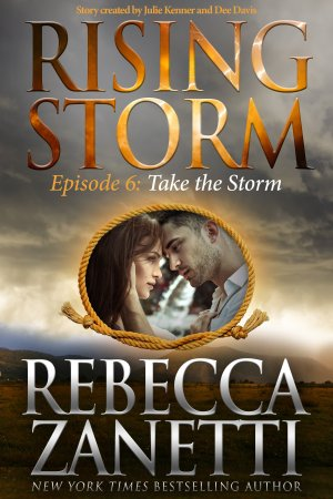 Take the Storm - E-Book Cover