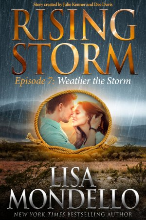 Weather the Storm - E-Book Cover